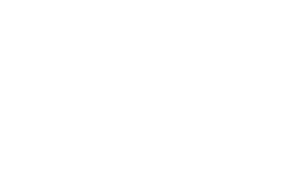 logoIntran-1